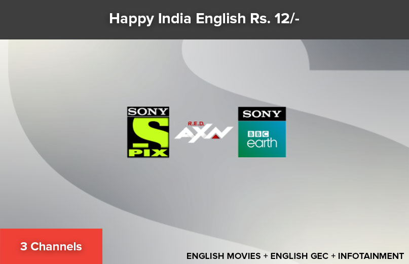Happy India English 12